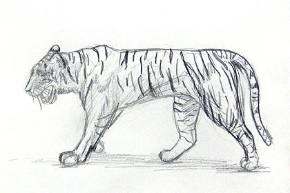 Curso online de desenho